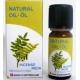 Эфирное масло Ладан / Incense / индийский 10 мл